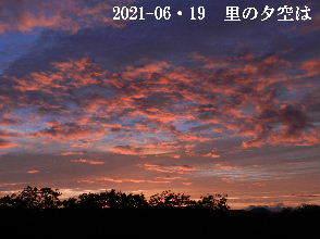 2021-06・19 里山の夕空は・・・ (6).JPG