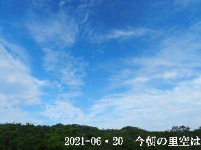 2021-06・20 今朝の里空は・・・ (2).JPG