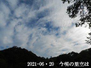 2021-06・20 今朝の里空は・・・ (3).JPG