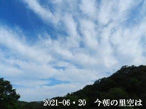 2021-06・20 今朝の里空は・・・ (4).JPG