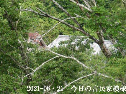 2021-06・21 今日の古民家模様.JPG