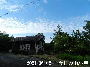 2021-06・21 今日の里山模様・・・ (2).JPG