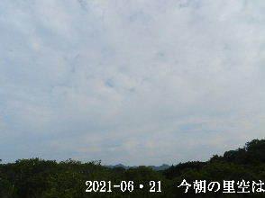 2021-06・21 今朝の里空は・・・ (1).JPG