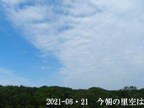 2021-06・21 今朝の里空は・・・ (2).JPG