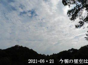 2021-06・21 今朝の里空は・・・ (3).JPG