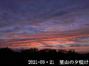 2021-06・21 里山の夕焼け・・・ (3).JPG