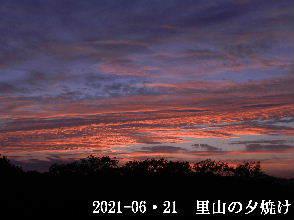 2021-06・21 里山の夕焼け・・・ (4).JPG