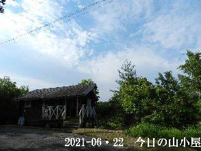 2021-06・22 今日の里山模様・・・ (2).JPG
