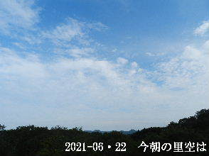 2021-06・22 今朝の里空は・・・ (1).JPG