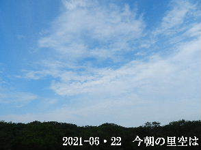 2021-06・22 今朝の里空は・・・ (2).JPG