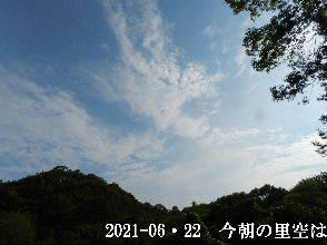2021-06・22 今朝の里空は・・・ (3).JPG