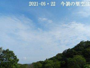2021-06・22 今朝の里空は・・・ (4).JPG